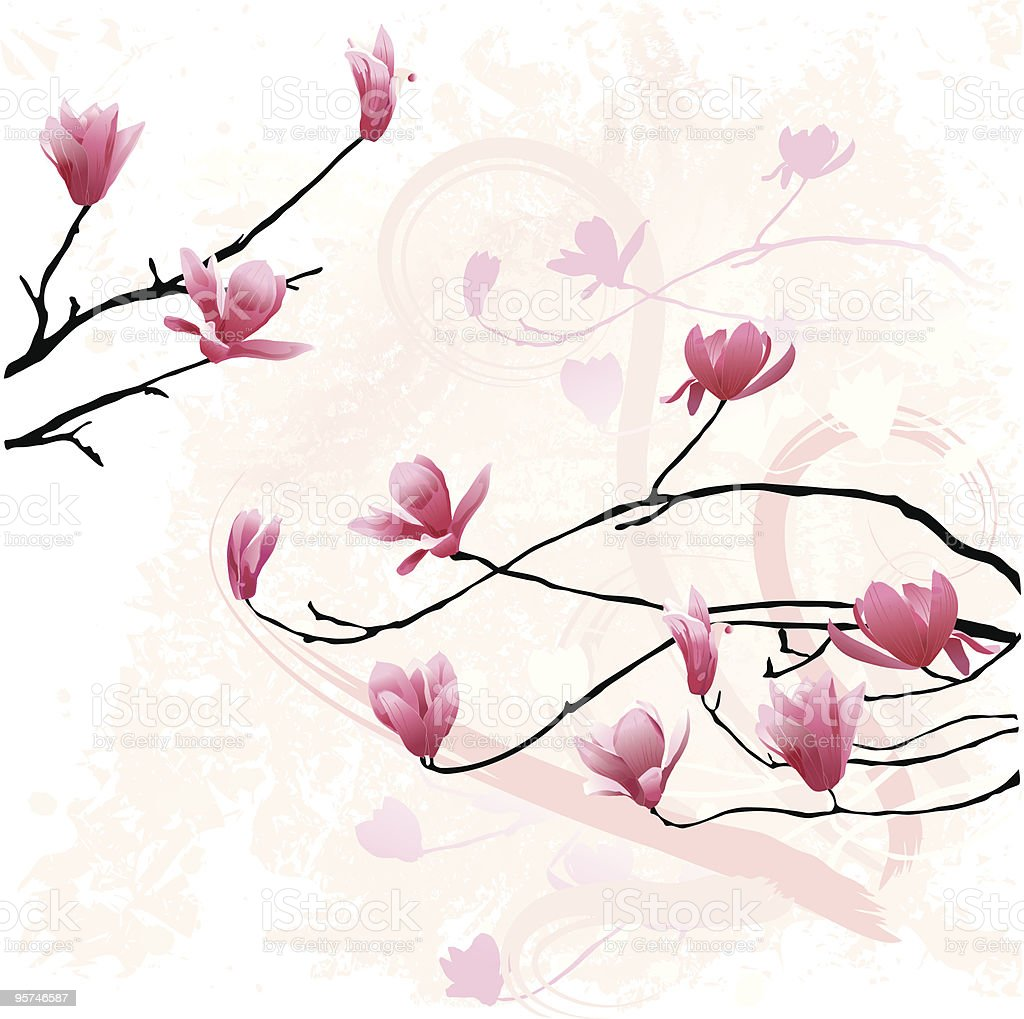 Spring Magnolias royalty-free stock vector art