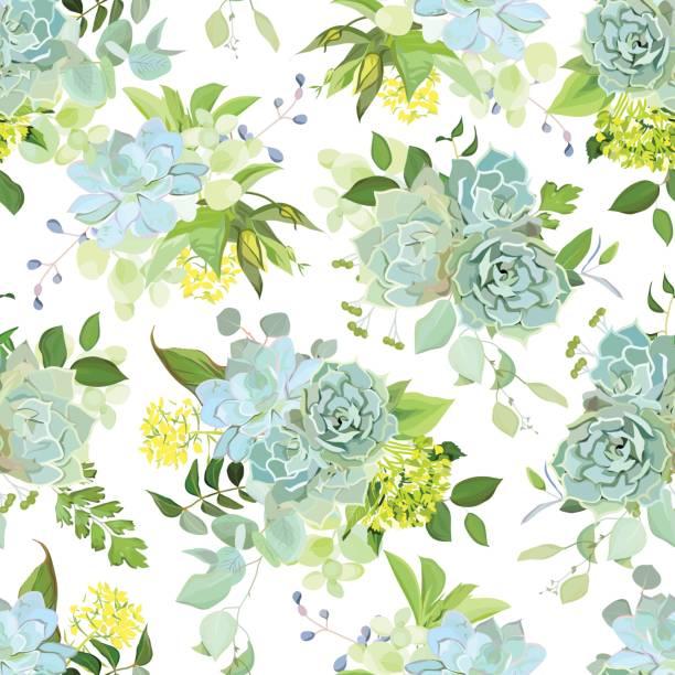 Primavera mezcla de suculentas, hierbas vector patrón de diseño - ilustración de arte vectorial