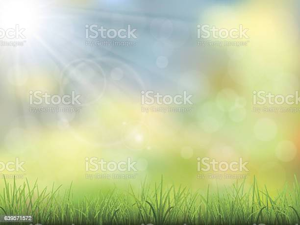 Spring nature background grass vector id639571572?b=1&k=6&m=639571572&s=612x612&h=visgqqa8by8nu8buny6nmb6oxkcxygc1jbomopo9rg4=
