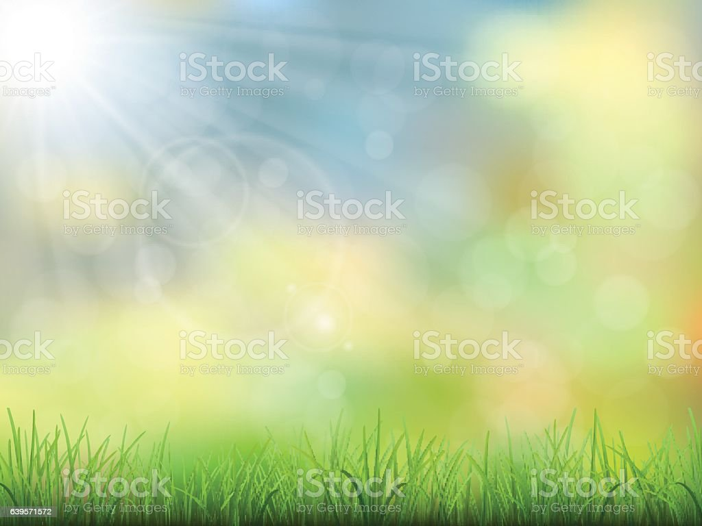 spring nature background grass - ilustración de arte vectorial