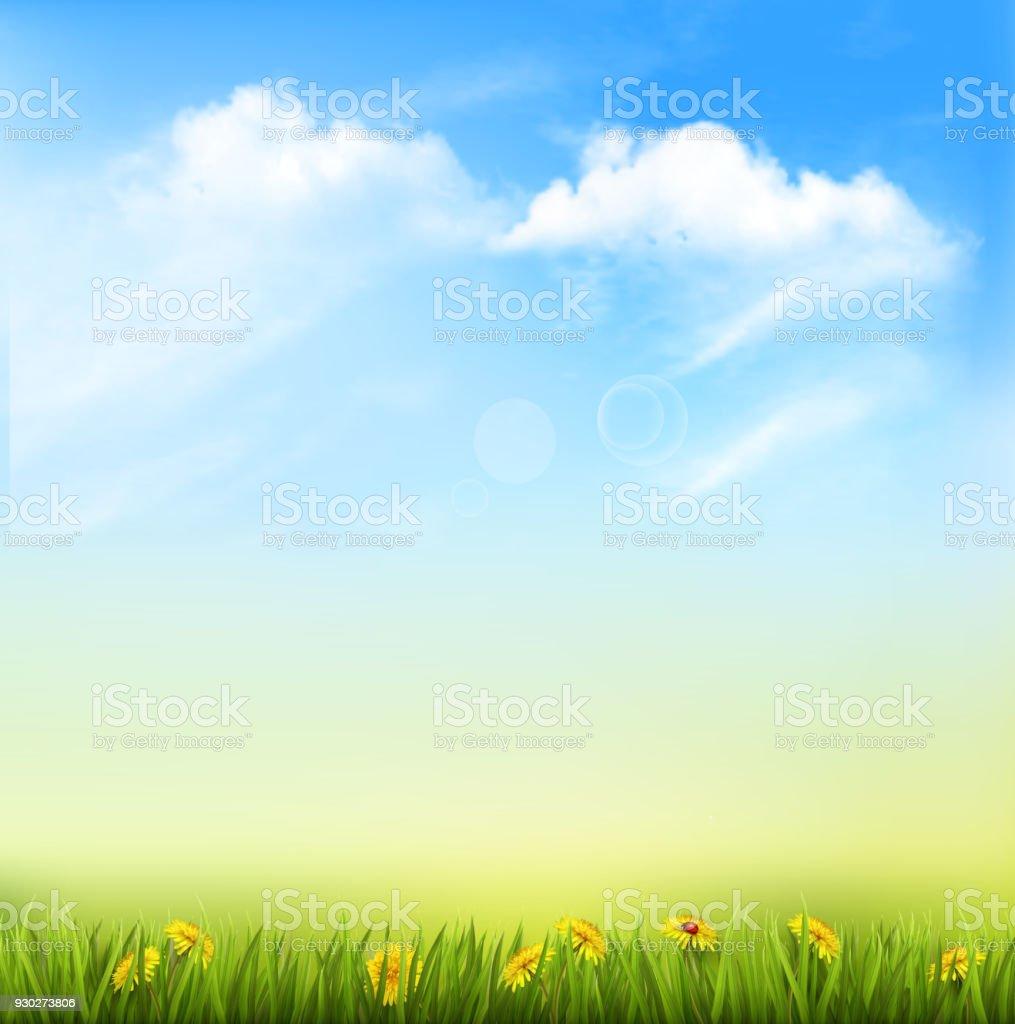 Yeşil çim Ve Mavi Gökyüzü Ile Bahar Doğa Arka Plan Stok Vektör