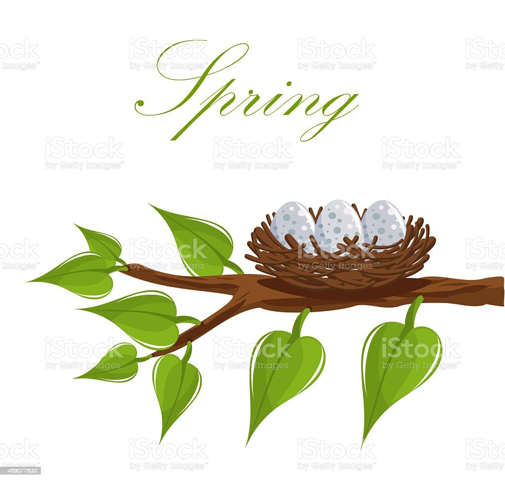 Spring nest vector art illustration