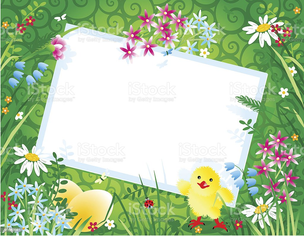 Spring or Easter floral background with blank card, eggs, chick royalty-free spring or easter floral background with blank card eggs chick stock vector art & more images of animal