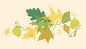 Spring or Summer Leaves. Vector illustration.