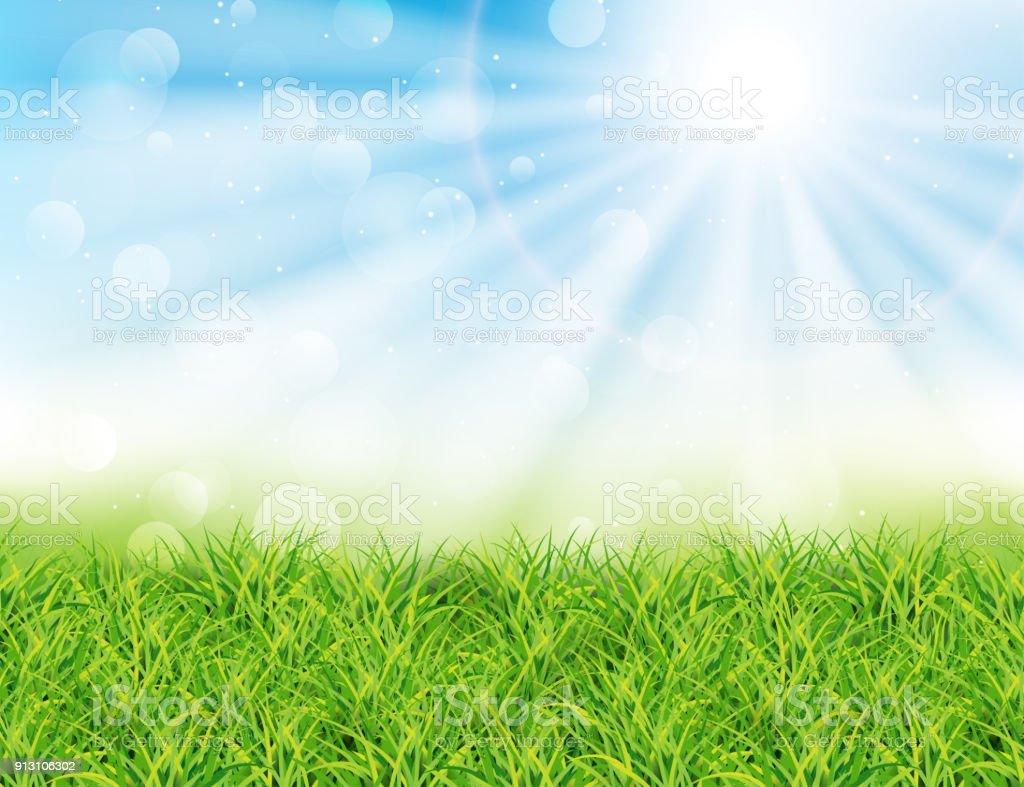 Spring or summer sunny day vector illustration.
