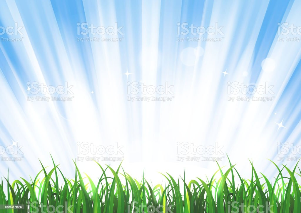 Spring Or Summer Sunrise Grass Landscape royalty-free stock vector art