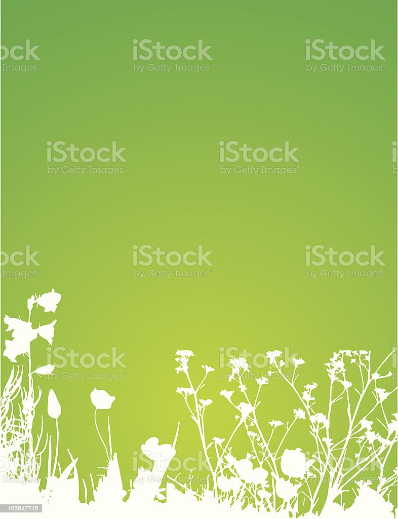 Spring plants royalty-free stock vector art