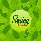 Spring sale, 50% off, new collection. Set of spring diverse, bright, fresh green leaves. Sticker, banner, poster. Bright and stylish background for creativity. Vector illustration of EPS10.