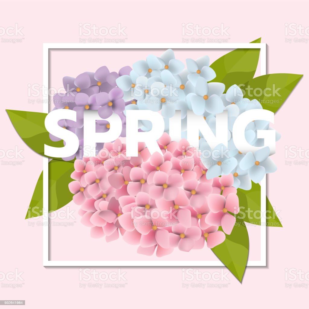 Spring Sale Background With Beautiful Pink Flower And Leaf Stock