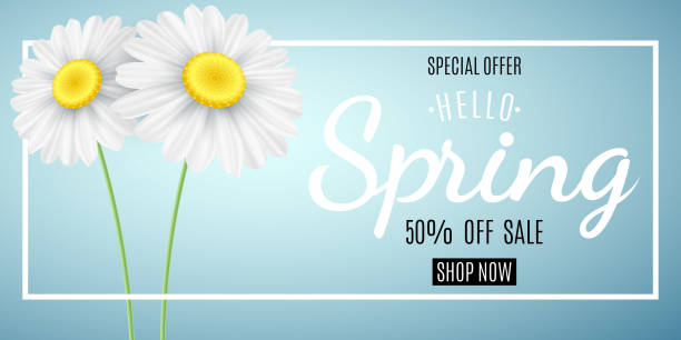 Spring sale concept. Special offer. Advertising web banner for sale. Chamomile on a blue background. Seasonal daisy flower. Hello spring. Calligraphic text. Vector illustration. EPS 10 vector art illustration