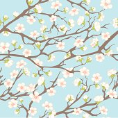 Spring background with branches and flowers for your design. EPS 8.
