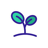 Spring seedling icon vector. A thin line sign. Isolated contour symbol illustration