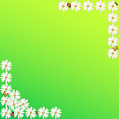 Spring Summer Background Green Color White Flowers Sign Frame Poster Placard Banner
