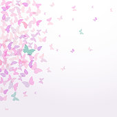 spring summer card design Colorful pink butterflies set white background.