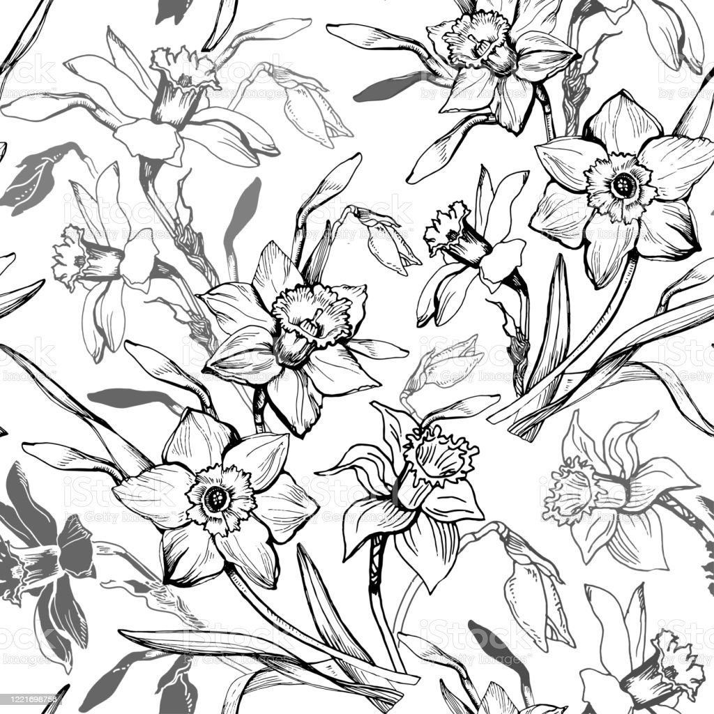 Spring Summer Floral Seamless Pattern With Hand Drawn Outline Flowers Daffodils Stock Illustration Download Image Now Istock