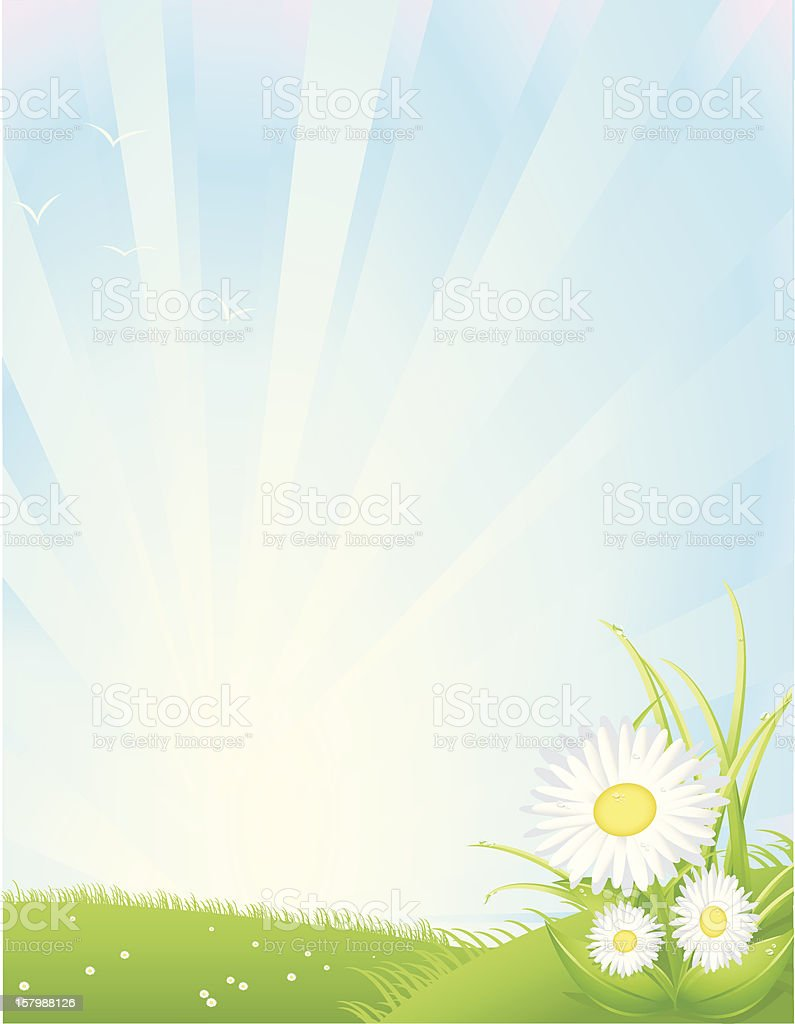 Spring Sunrise, Vertical royalty-free spring sunrise vertical stock vector art & more images of bird