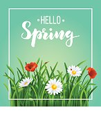 Spring template poster with green grass and flowers, vintage vector illustration