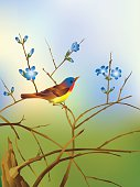 Bird perched on branch with flowers. Background is a gradient mesh.
