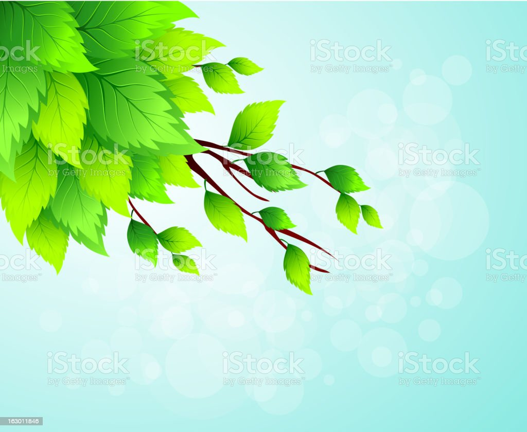Spring tree branch royalty-free spring tree branch stock vector art & more images of abstract