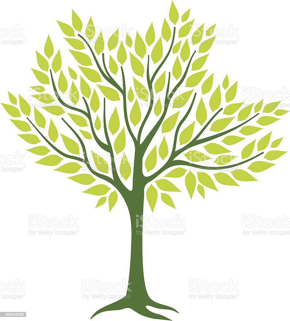 Spring tree royalty-free spring tree stock vector art & more images of beauty in nature