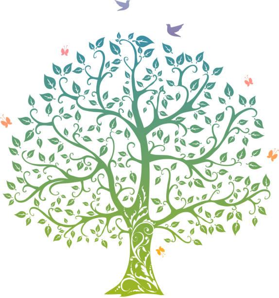 illustrazioni stock, clip art, cartoni animati e icone di tendenza di albero di primavera - farfalla ramo