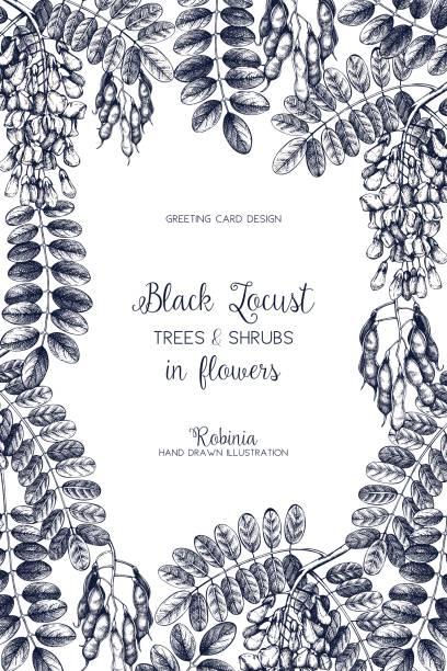 bäume frühlingscard - robinie stock-grafiken, -clipart, -cartoons und -symbole