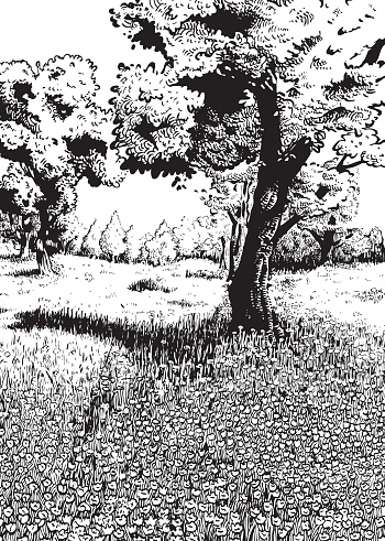 Spring (Black and White version)