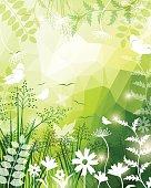 Spring Background. EPS 10.