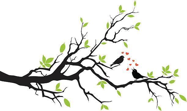 spring - gałąź część rośliny stock illustrations
