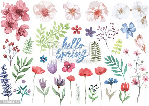 A collection of painted with watercolor flowers, grasses, branches with leaves and blooming flowers with text in the middle
