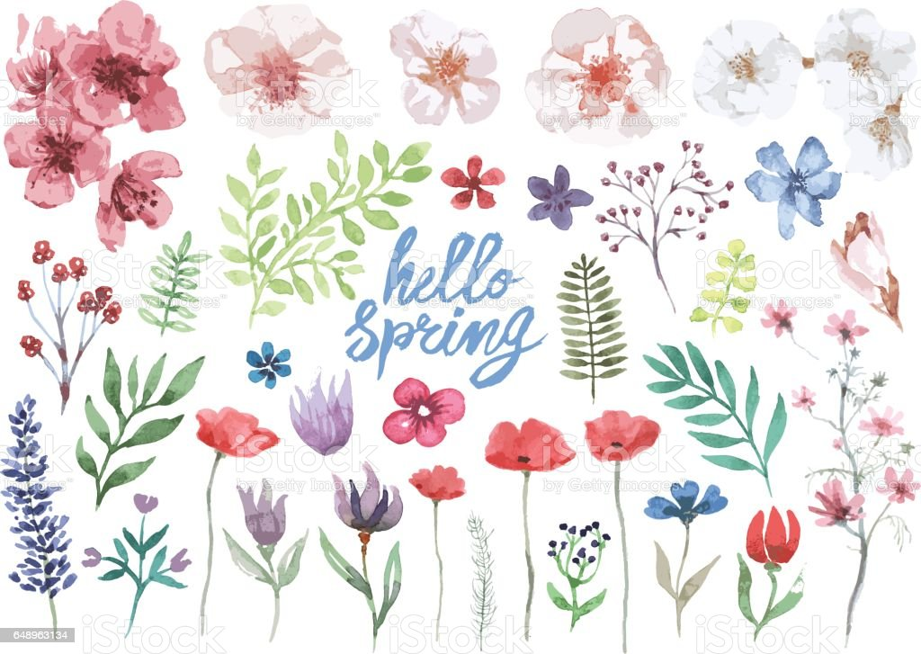Spring watercolor floral collection vector art illustration