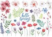 春の水彩花コレクション