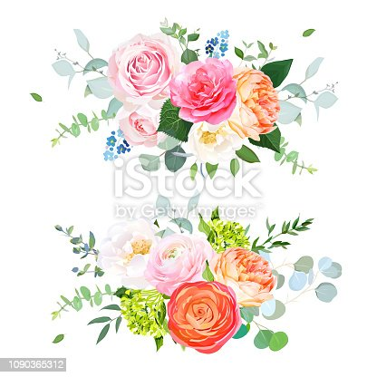 Pink and magenta garden rose,coral juliet rose,orange ranunculus, green hydrangea, eucalyptus and greenery vector design horizontal bouquets.Spring wedding flowers. Floral banner.Isolated and editable