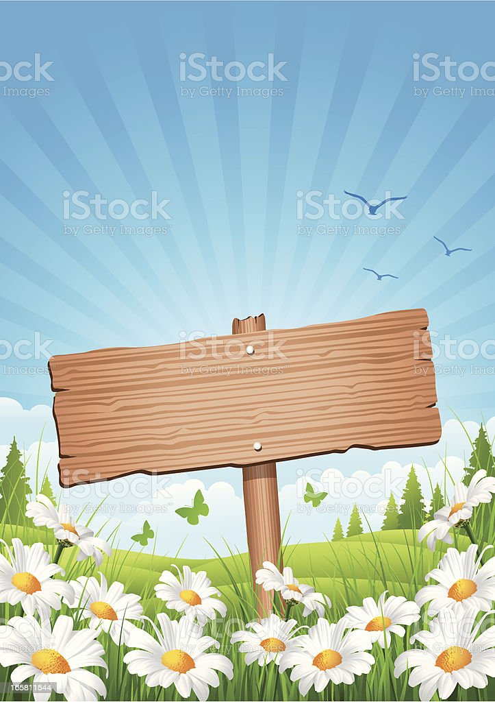 Spring Wooden Sign royalty-free stock vector art