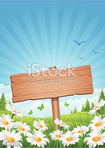 istock Spring Wooden Sign 165811544