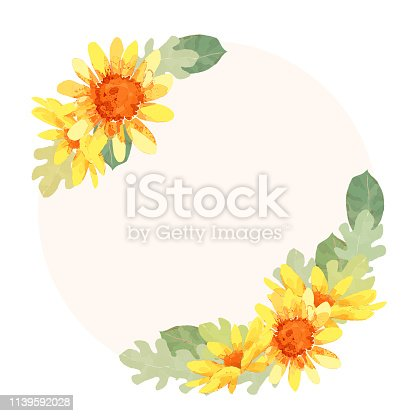 sunflower/daisy/botanical frame/border/background/greeting card/invitation/vector illustration/spring/summer