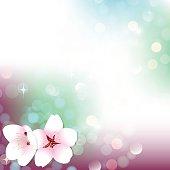 Spring bokeh vector cherry blossom background banner postcard