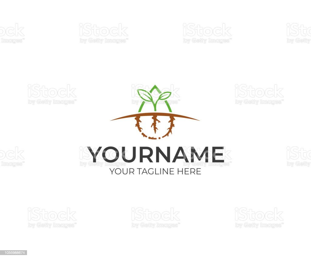 Sprout green logo design. Growth and prosperity vector design. Agriculture illustration vector art illustration