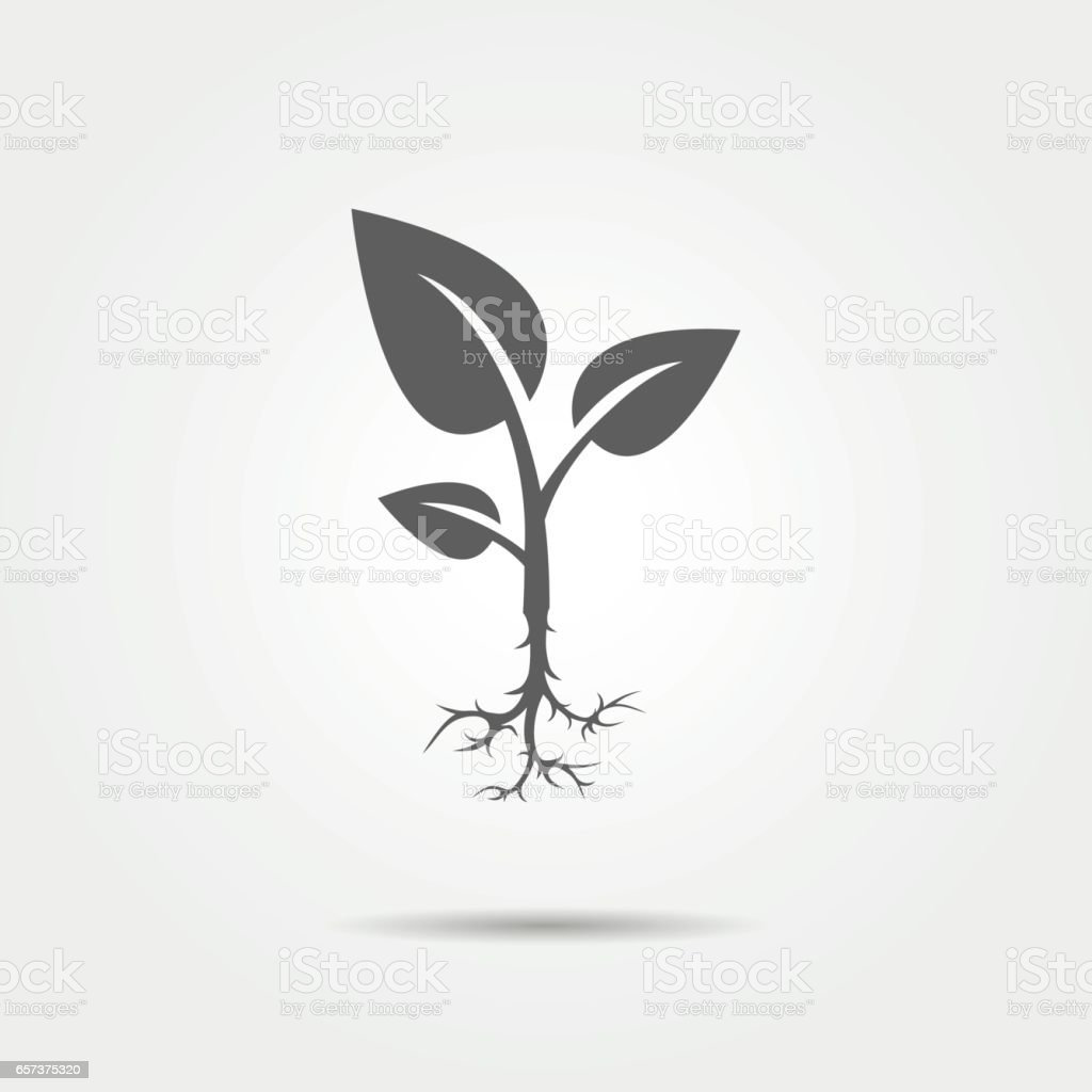 Sprout icon vector art illustration