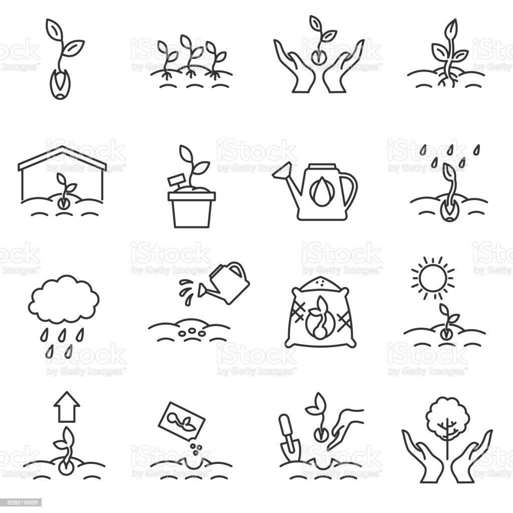 sprout icons set. Editable stroke. vector art illustration