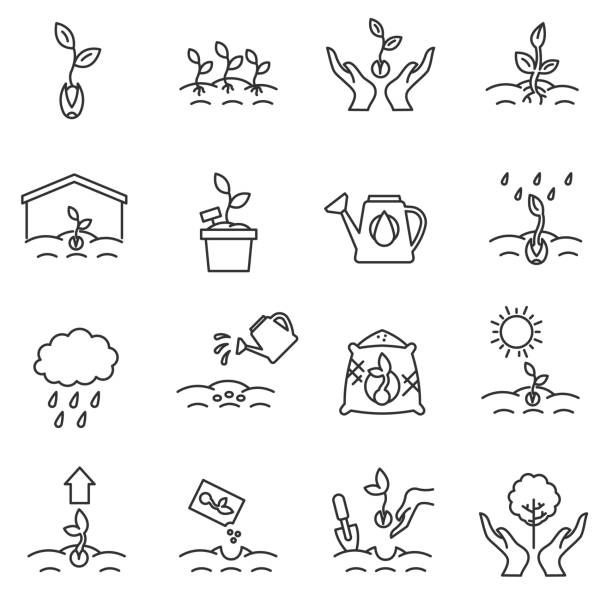 sprout icons set. Editable stroke. sprout icons set. growing plants from seeds collection. cultivation, care of sprouts and seedlings.Thin line design. gardening, vector linear illustration gardening stock illustrations