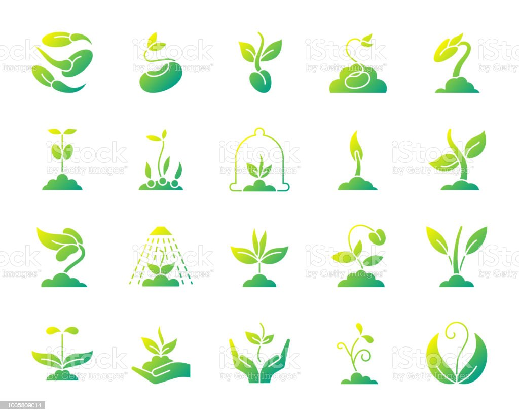 Sprout simple gradient icons vector set vector art illustration