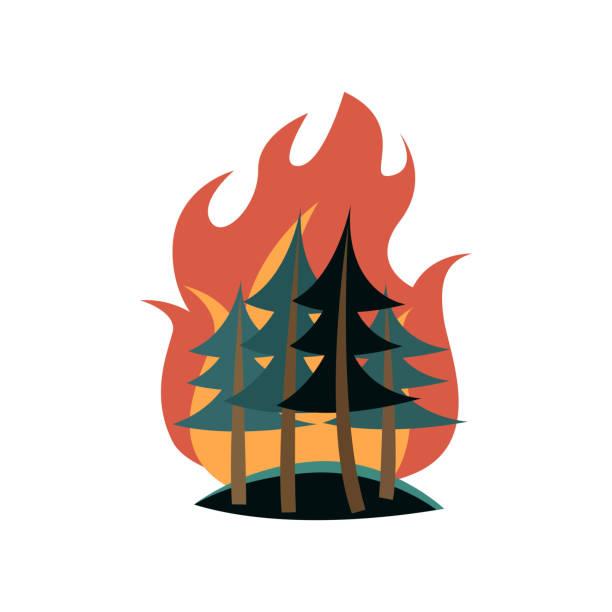 ilustrações de stock, clip art, desenhos animados e ícones de spruces in forest on fire isolated on white background - inflamável