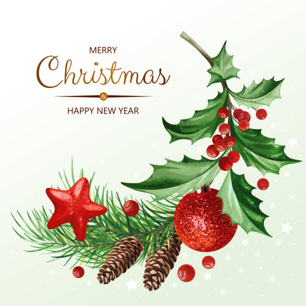 Square banner with text and Christmas decoration - Holly leaves, Christmas tree with cones, stars and ball on white background. vector art illustration
