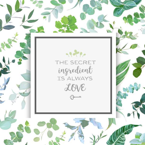 ilustrações de stock, clip art, desenhos animados e ícones de square botanical vector design frame - flower white background