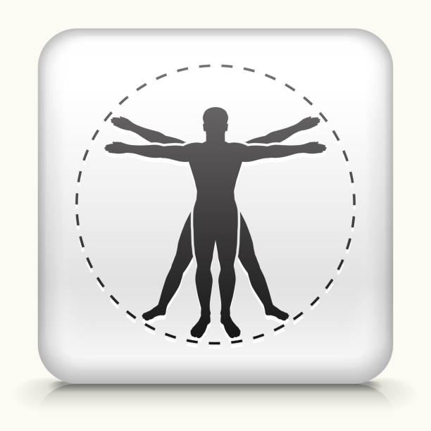 Square Button with Human Anatomy royalty free vector art Royalty free vector art. The black interface icon is on a simple white Background. Button has a bevel effect and a light shadow. 100% royalty free vector file and can be easily modified, icon download comes with vector art and jpg file. White Square Button with Human Anatomy interface icon biofeedback stock illustrations