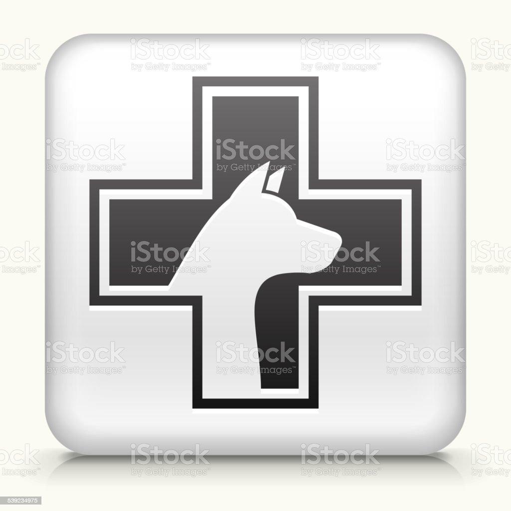 Botón cuadrado con la salud para mascotas ilustración de botón cuadrado con la salud para mascotas y más banco de imágenes de 2015 libre de derechos