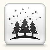 White Square Button with Snowing Forest Icon