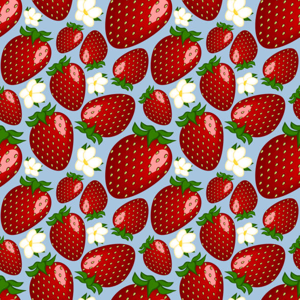 Bекторная иллюстрация Square drawing, illustration - red ripe delicious berries garden strawberries or strawberries and white flowers lie on a blue background