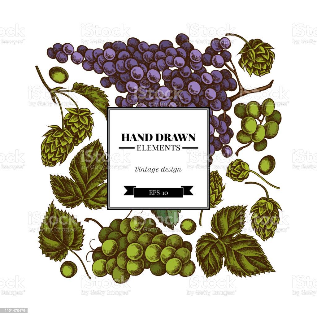 Clipart uvas de acuarela uvas verdes uvas negras descarga   Etsy in 2020    Grapes, Watercolor, Wall prints